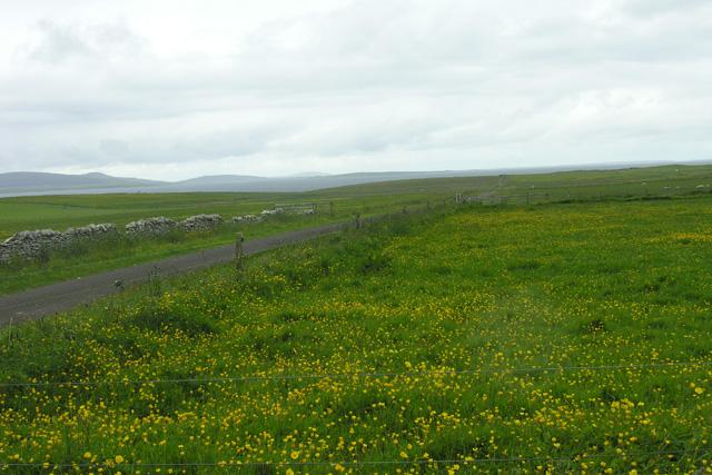 Fields near Gebro, Shapinsay