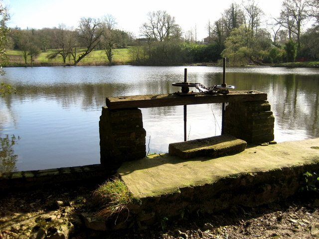The Great Pond and sluice gate  -  Forde Abbey