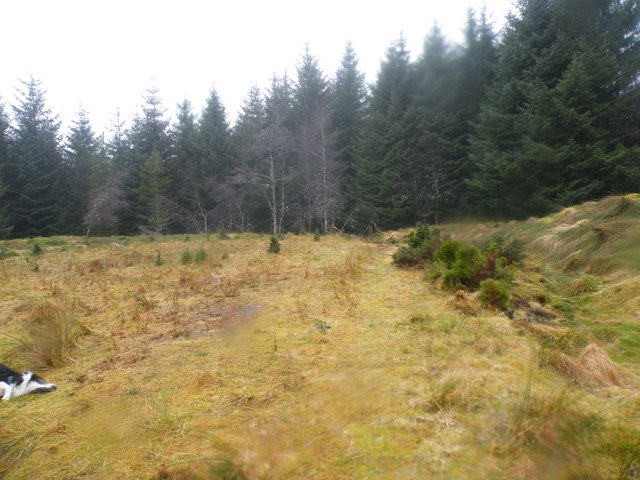 End of the Track near Cnocan Dubh
