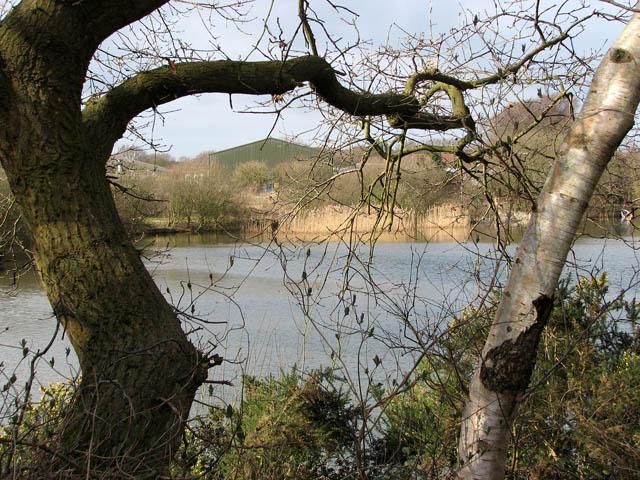 View across fishing lake