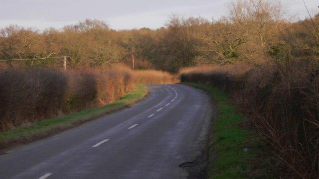 Shillinglee Road looking east