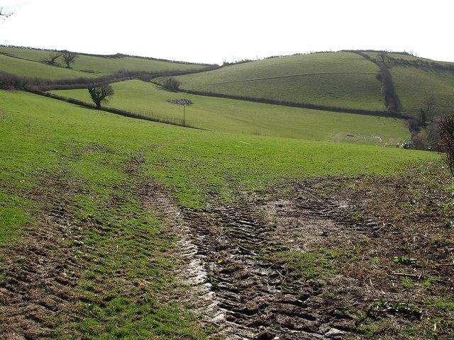 Field, Pridhamsleigh