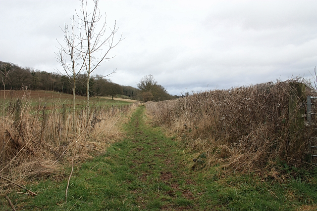Bridleway to Hundred Bank