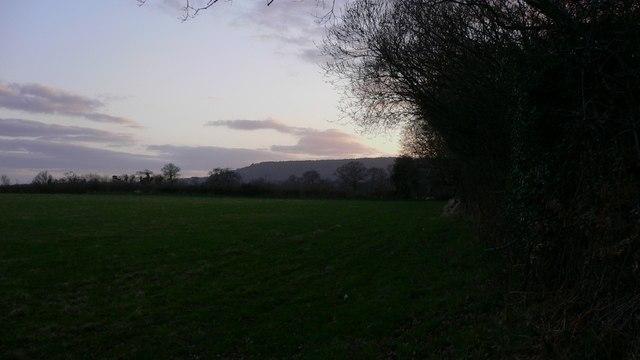 Large field alongside Shillinglee Road