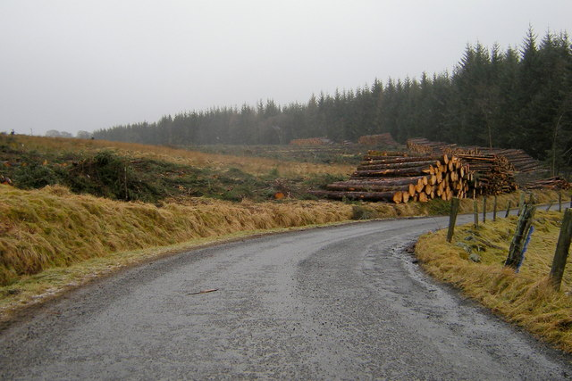 Timber operations in Glenmoy