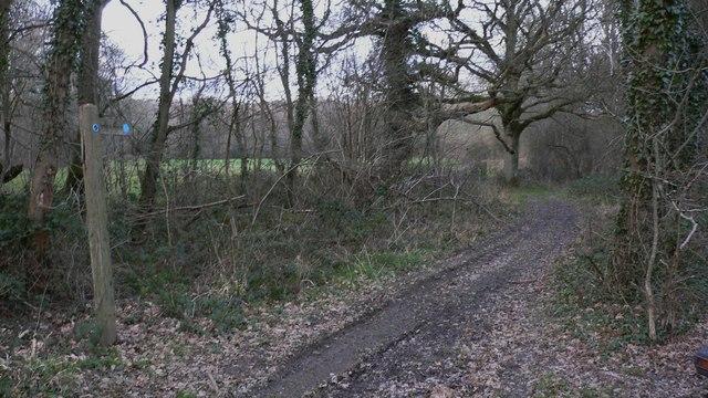 Sussex Border Path at Gospel Green