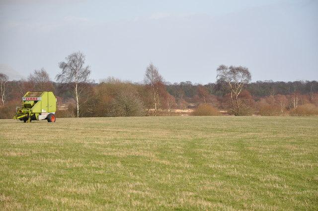 Looking West towards Flanders Moss