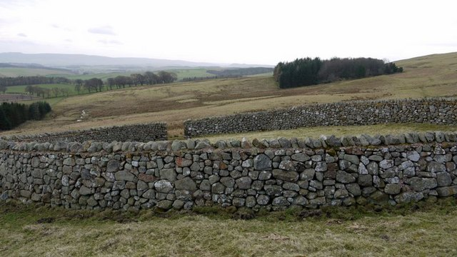 Beautifully made sheepfold south of Hart Law
