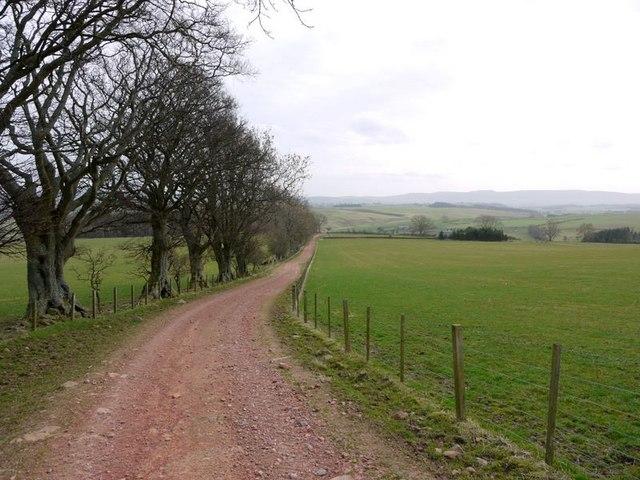 Track near Northfieldhead