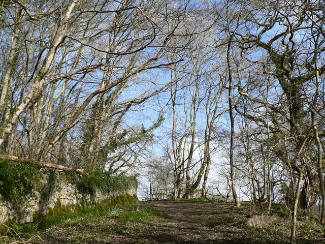 Footpath to Old Castle Down, Castle-upon-Alun.