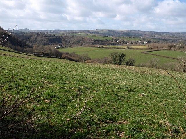 Field above Pridhamsleigh
