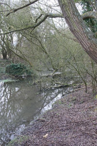 The canal by Gypsy Lane bridge