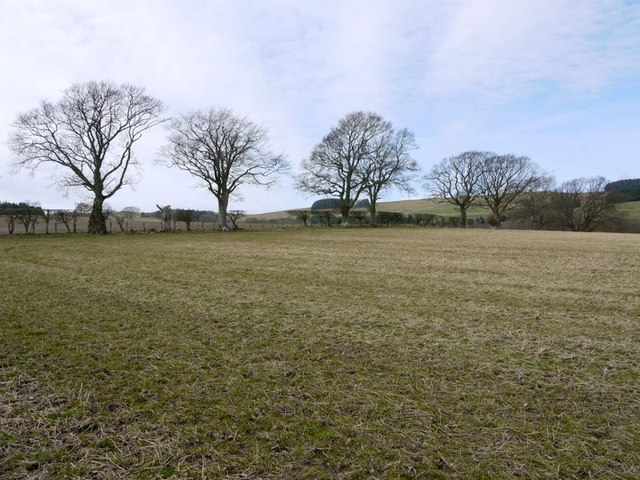 Stubble field west of Prendwick