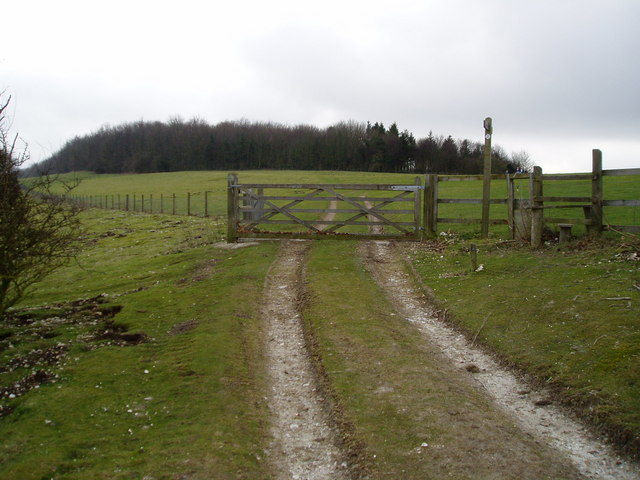 Gate to open pastures of Arundel Park