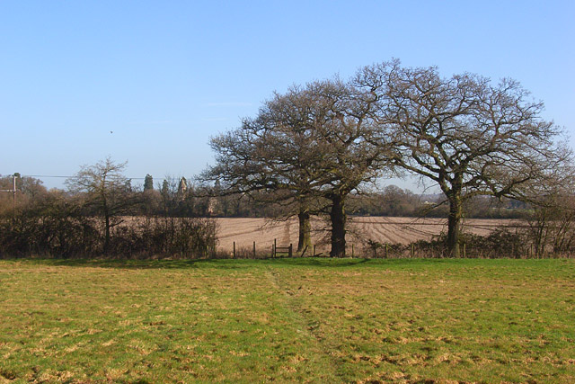 Farmland, Burghfield