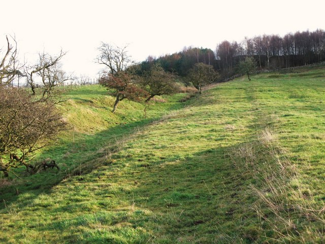 The north defensive ditch of Hadrian's Wall west of Milecastle 29 (2)