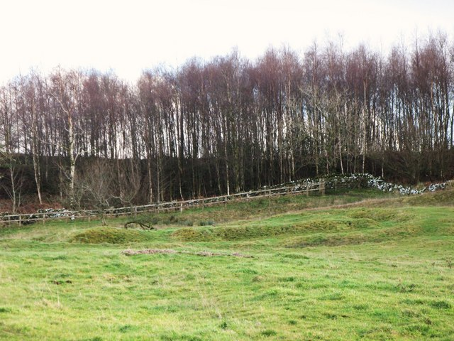 (The site of ) Milecastle 29 - Tower Tye (2)