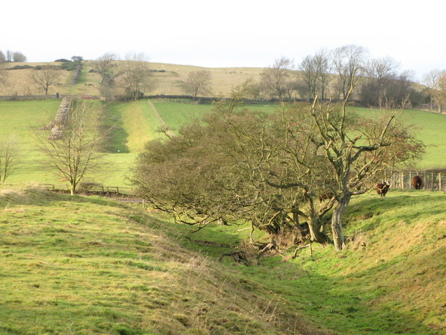The north defensive ditch of Hadrian's Wall west of Milecastle 29 (3)