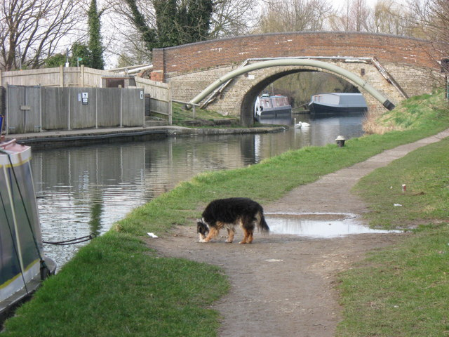 Grand Union Canal Bridge No 131, Marsworth