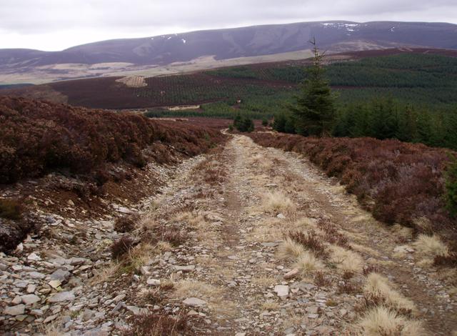 Track above Tarf Moss