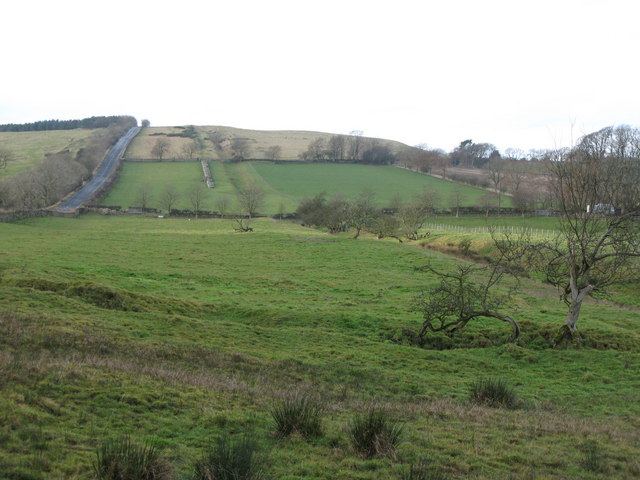(The site of ) Milecastle 29 - Tower Tye (5)