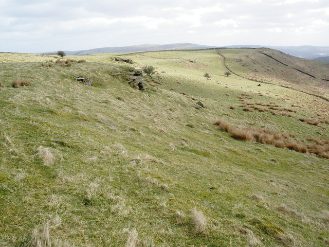 Moorland, to the north of Trehafod