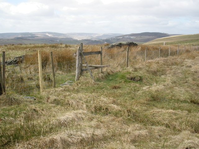 Boundary fence, at the edge of St Gwynno Forest