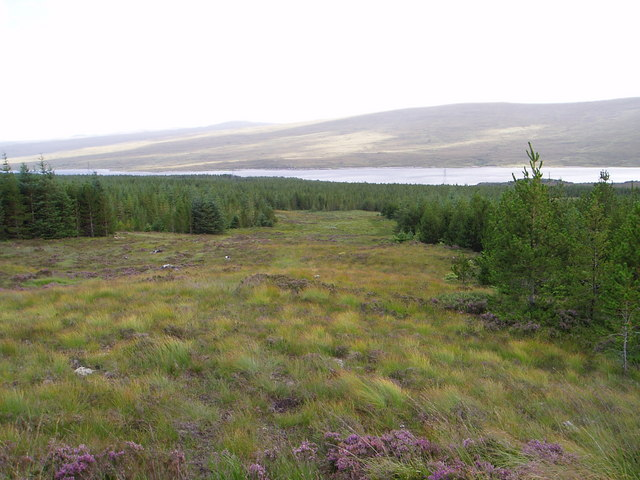 View from forest track over Loch Shin