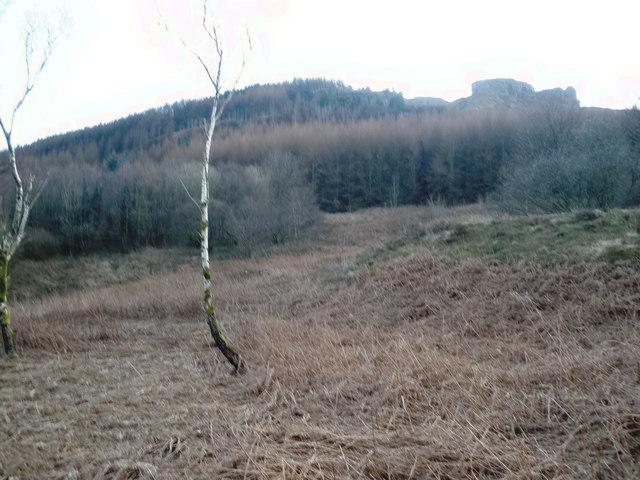 Hillside, south of Treherbert