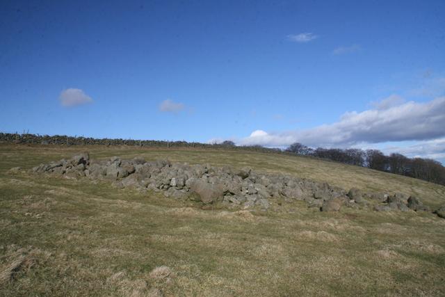 Cairn, Ogil Hill