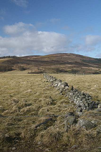 Dry stone wall, Ogil Hill