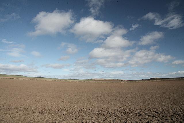 Farmland, East Memus