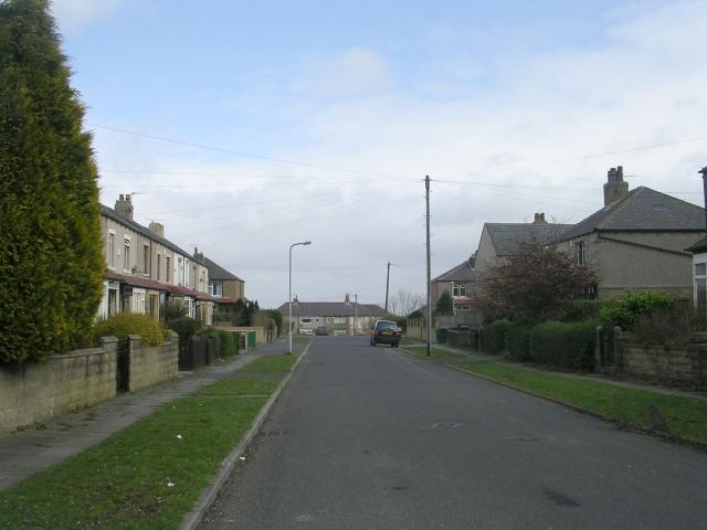 Briggs Grove - Moore Avenue