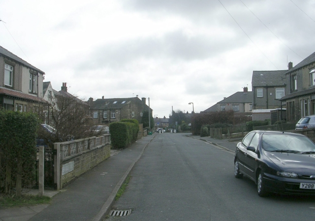 Briggs Avenue - Briggs Grove