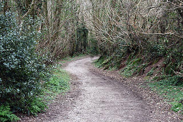 Wrinkly Lane near Cowlands