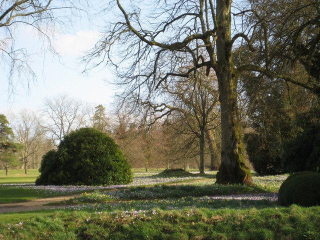 Spring Garden - Forde Abbey