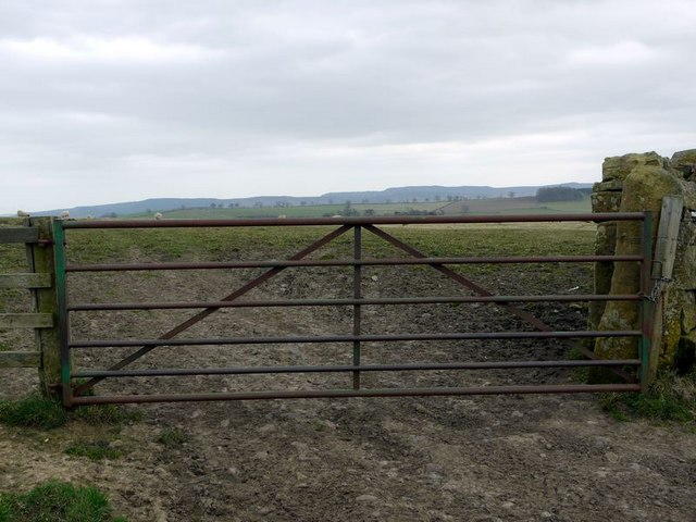 Gate west of Blackchester Hill