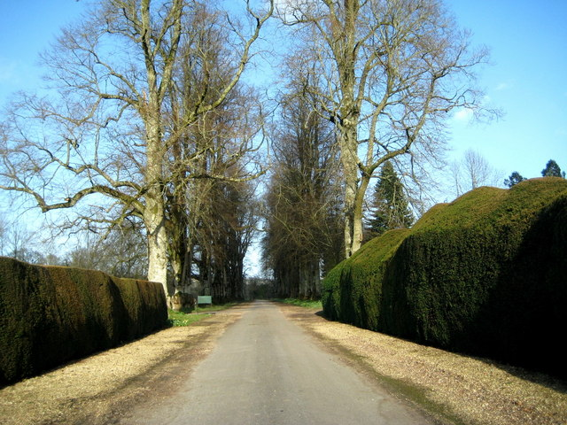 The drive - Forde Abbey