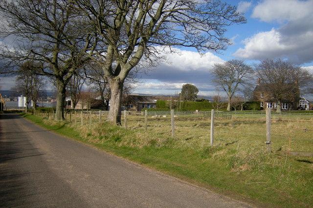 Ferryden Farm