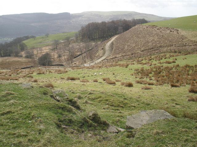 Cwm Hafod