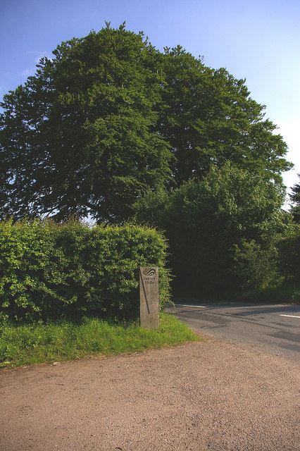 Surrey Hills AONB sign