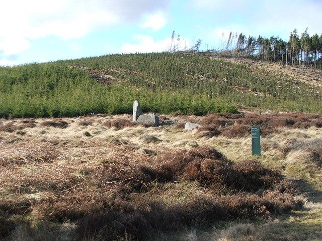 Whitehill Stone Circle