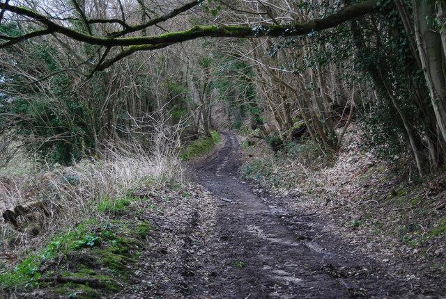 Standfast Lane (3)