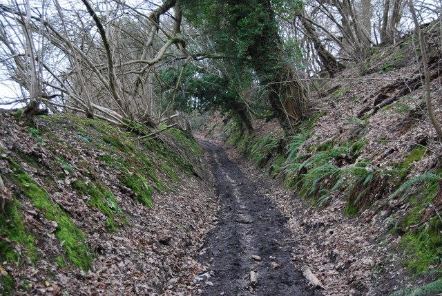 Standfast Lane, sunken lane