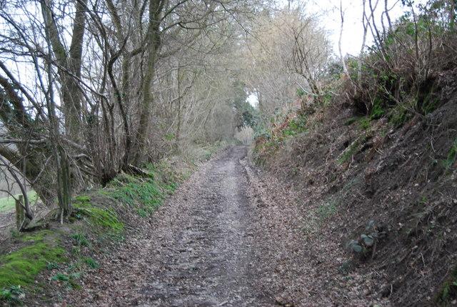 Standfast Lane (4)