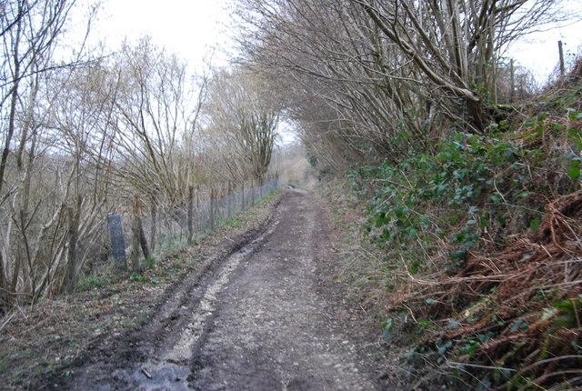 Standfast Lane (5)