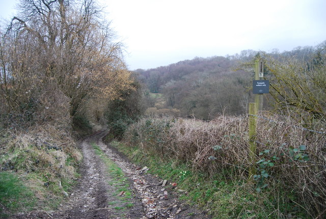 Footpath leading North East from Standfast Lane