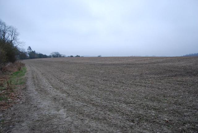 Large fallow field