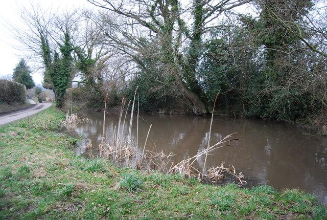 Pond, Upland Lane