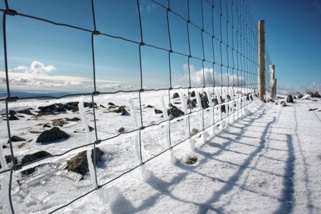 Fence, Harter Fell